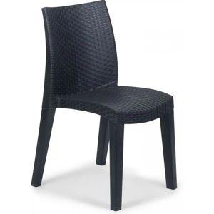 FIELDMANN   FDZN 3020 - plastová stolička LADY v prevedení umelý ratan, rozmery 55 x 48 x 86 cm